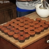 cupcakes_9431