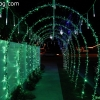 christmaslights_7623