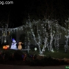 christmaslights_7624