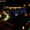 christmaslights_7631