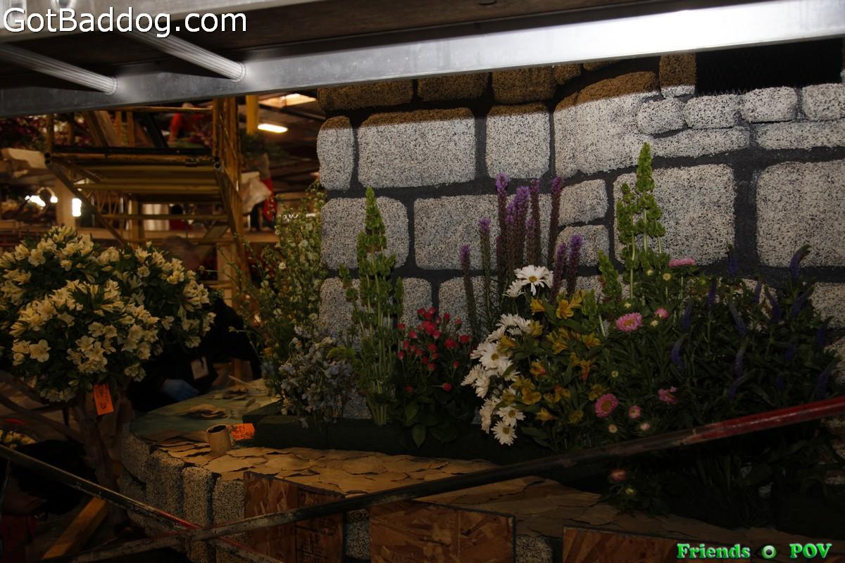flowers-on-6967