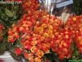 flowers-on-6957
