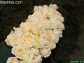 flowers-on-7046