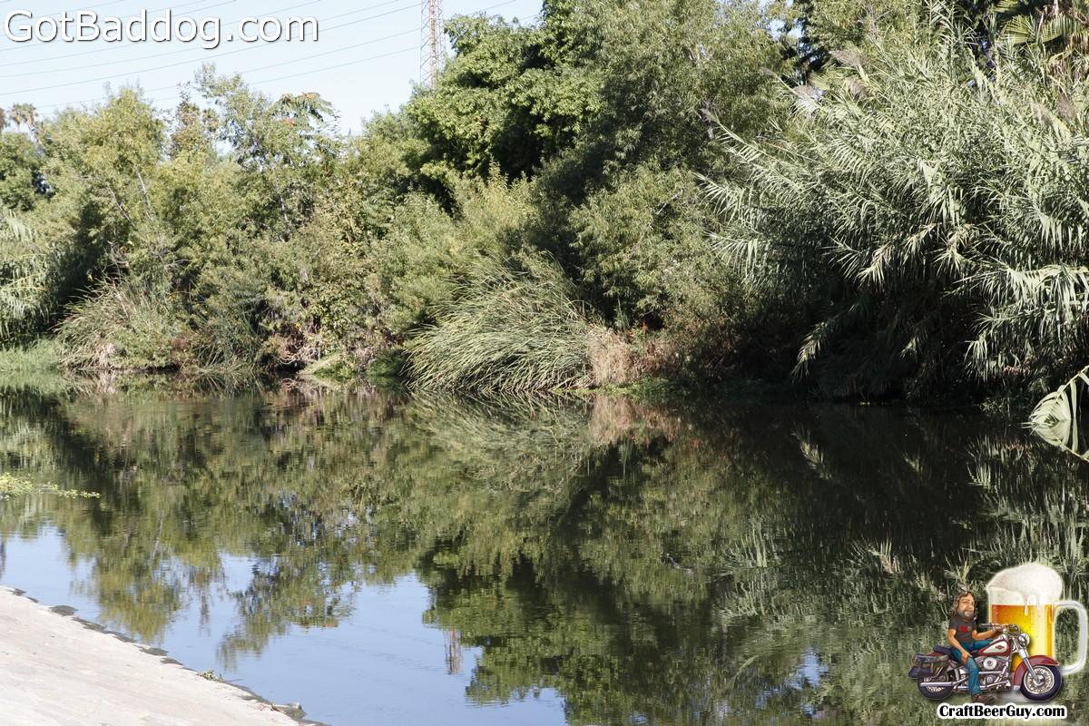 la-river-rally_2100
