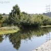 la-river-rally_2098