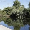 la-river-rally_2099