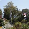gardens_1324