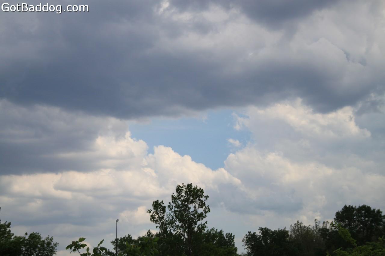 storm_6813