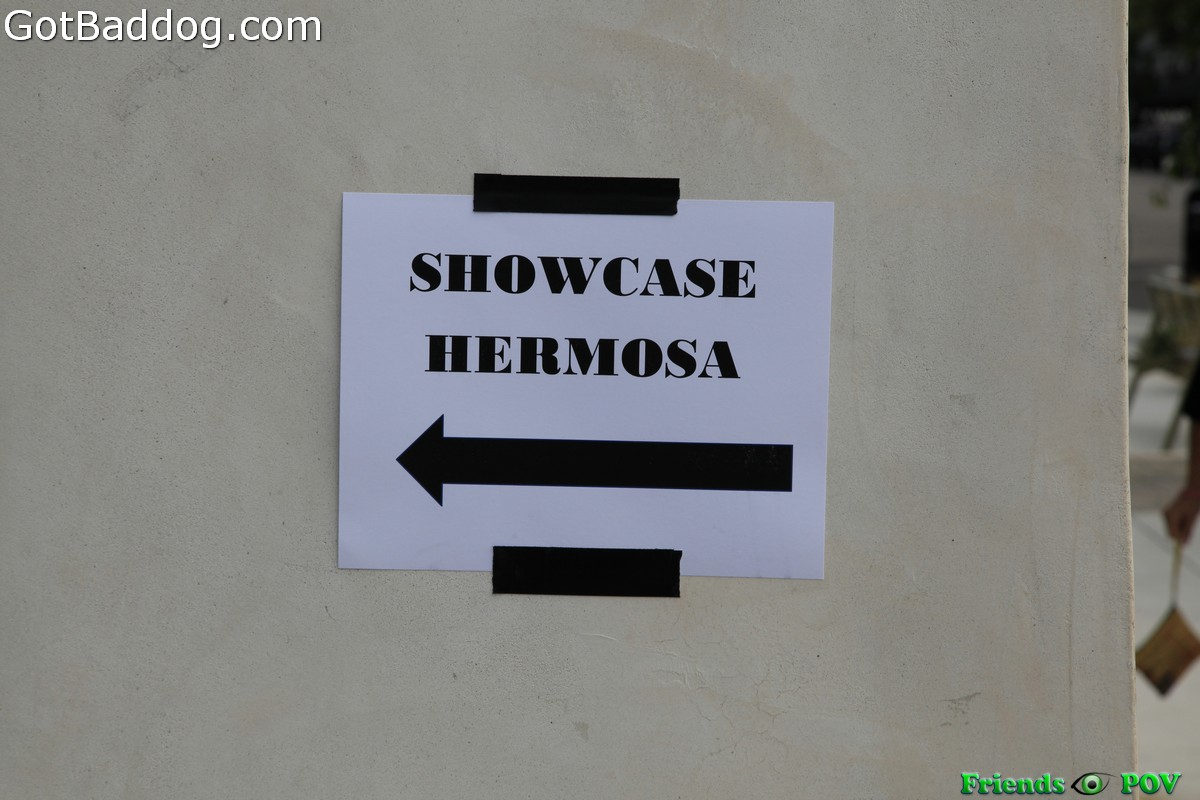showcase_5205