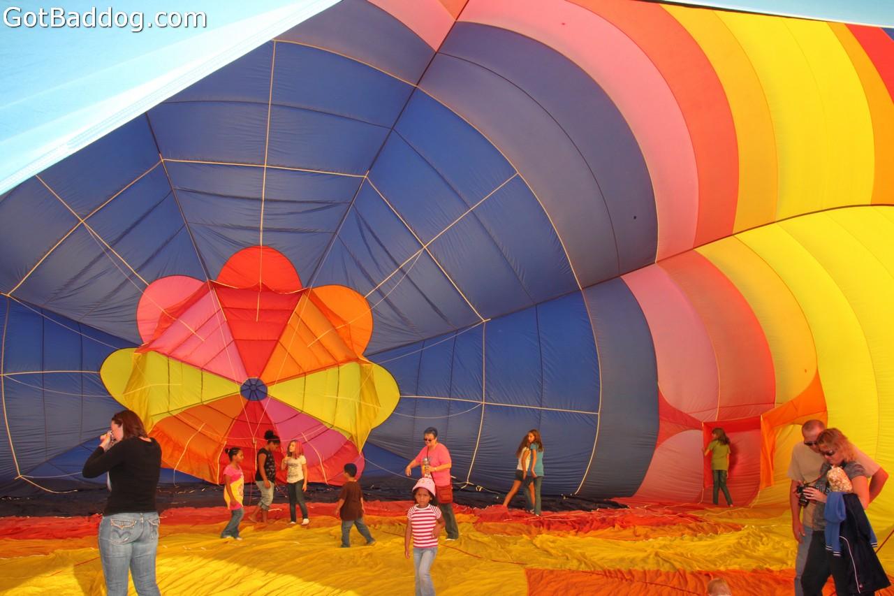 balloonfest_0208