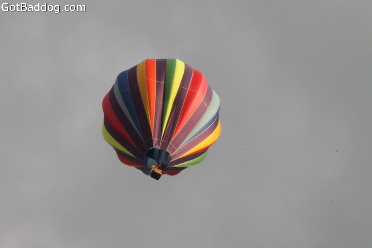 balloonfest_0303
