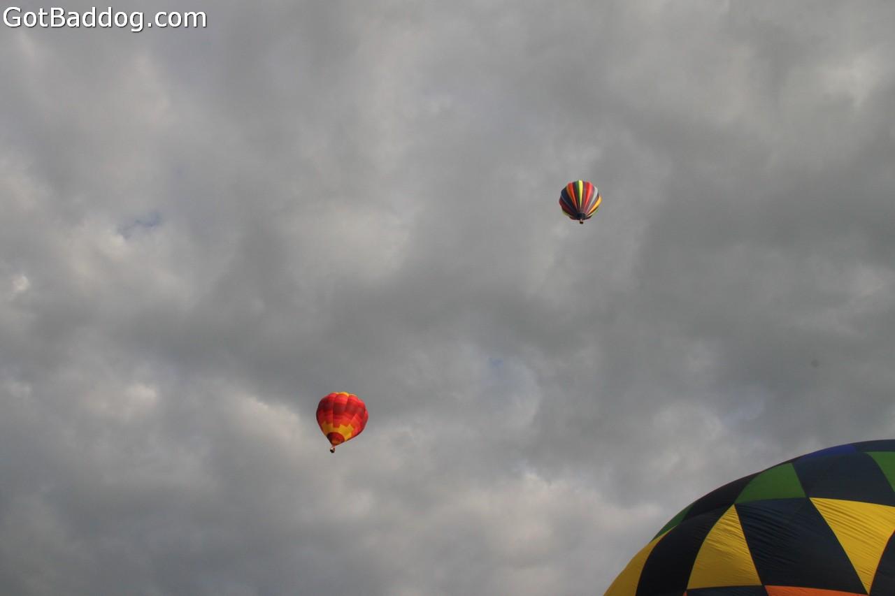 balloonfest_0305