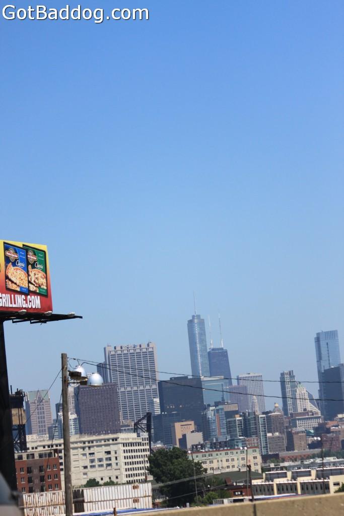 chicago_5849