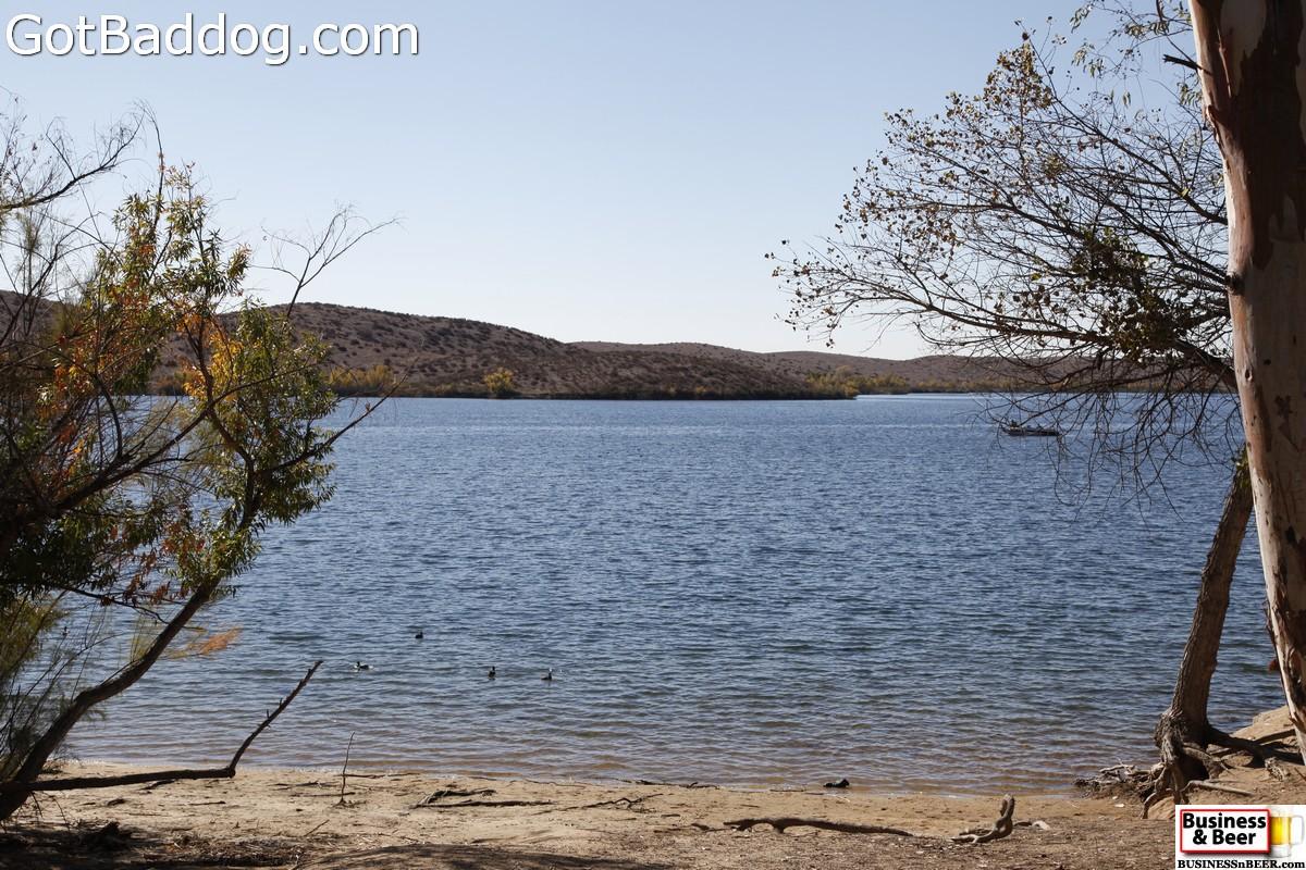lakeskinner_3516
