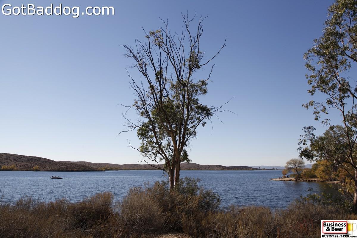 lakeskinner_3520