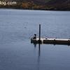 lakeskinner_3511