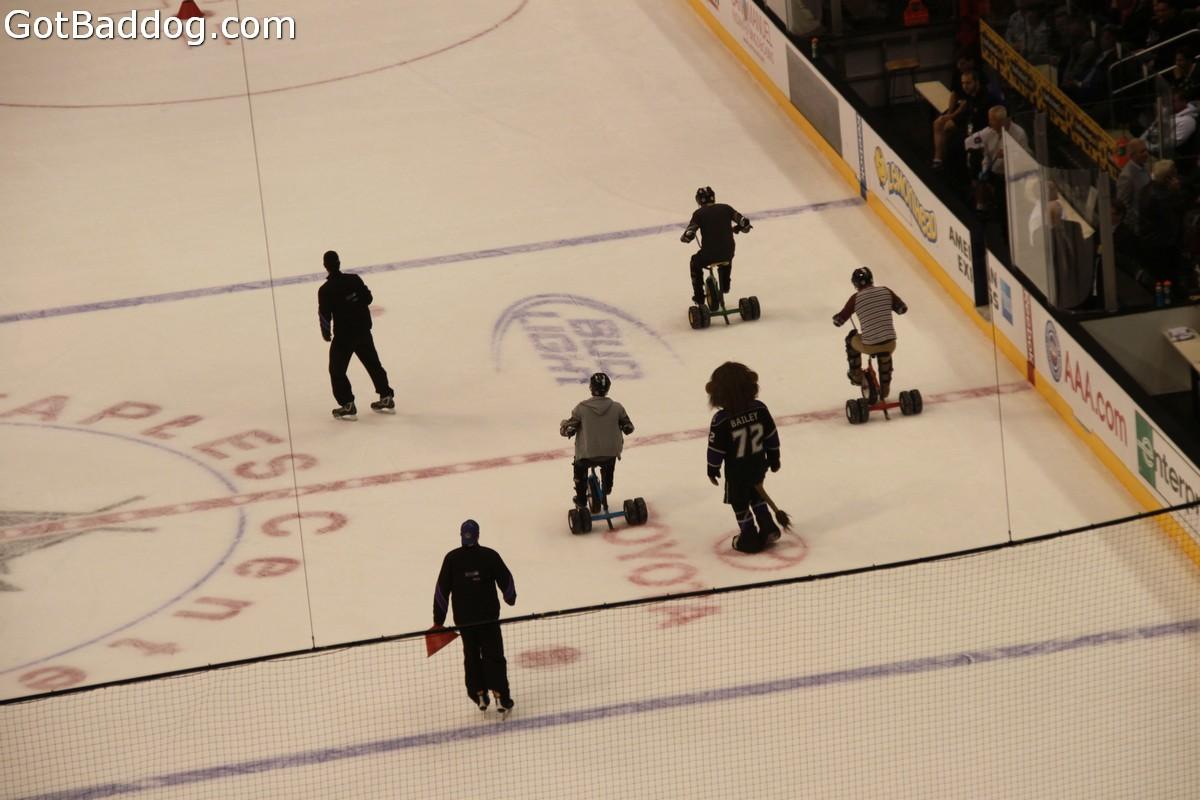 hockey_1802