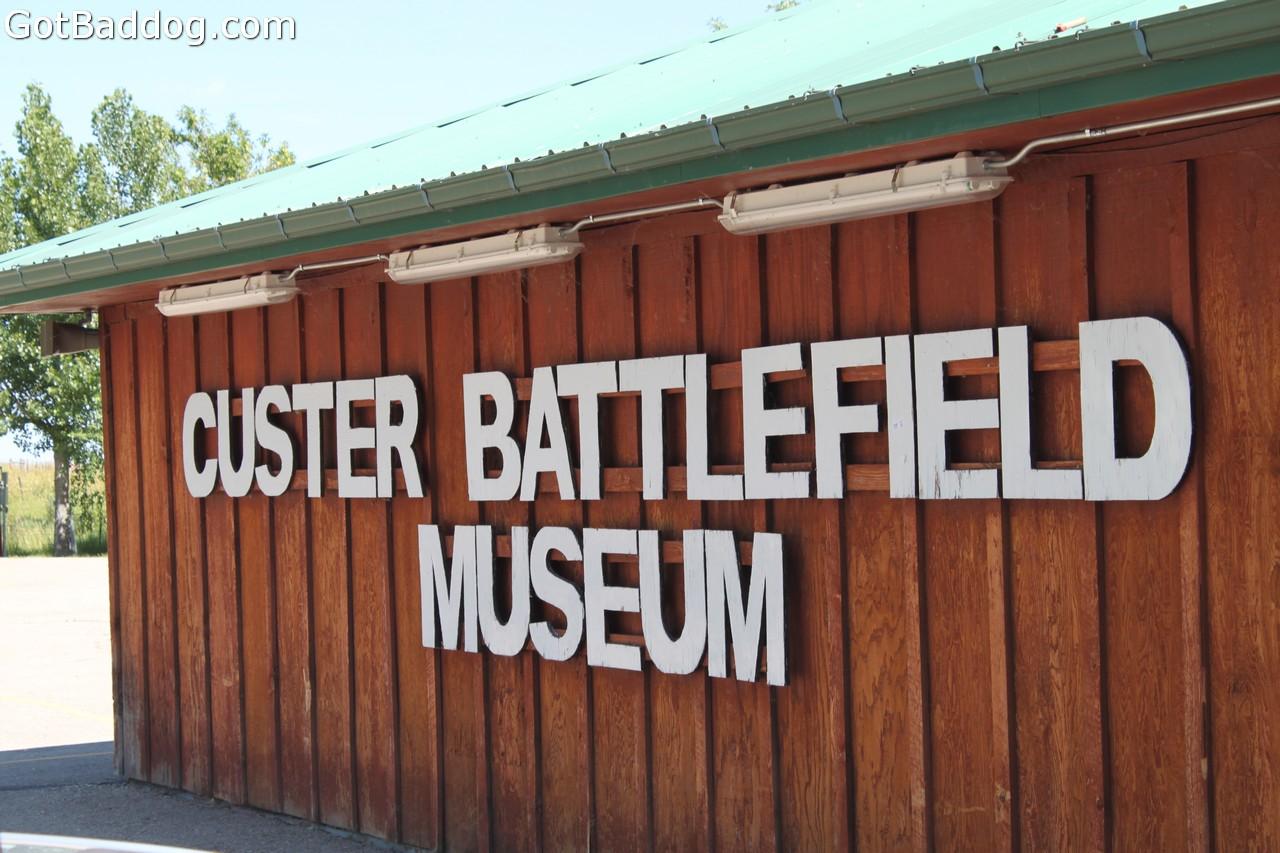 custer_4286