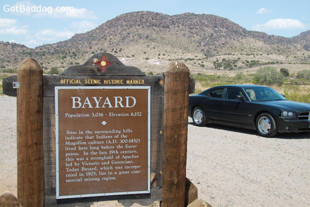 bayard_5155