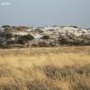 whitesands_5291