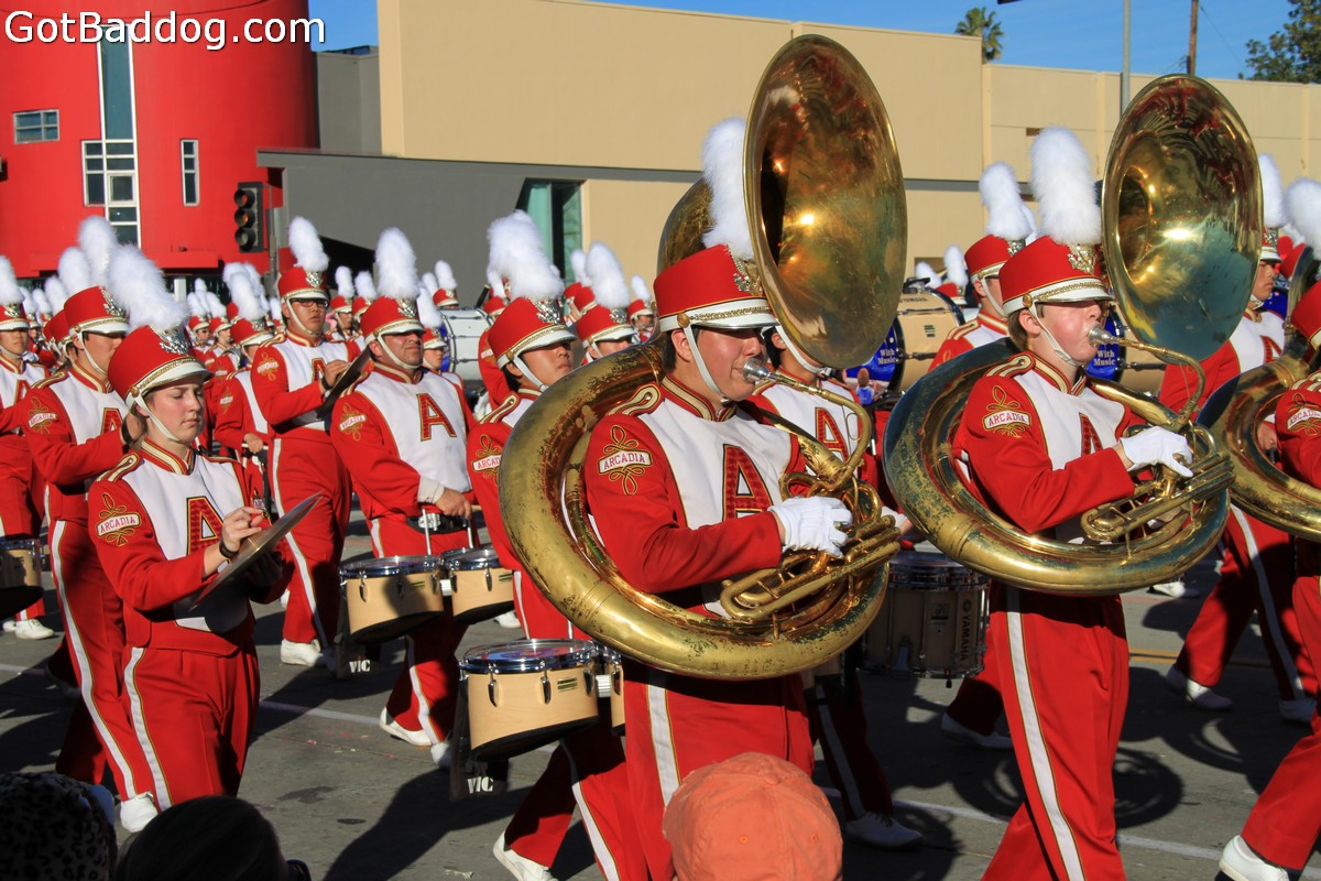 roseparade_6069