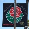 roseparade_5760