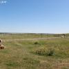trnationalpark_4169