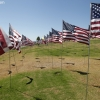 flags_6493