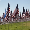 flags_6498