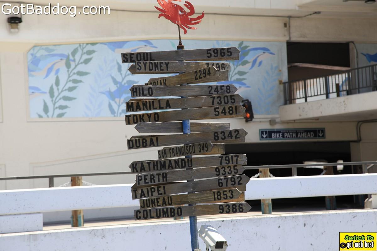 pier-boardwalk_1171
