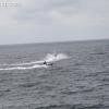 pier-boardwalk_1213