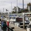 pier-boardwalk_1267