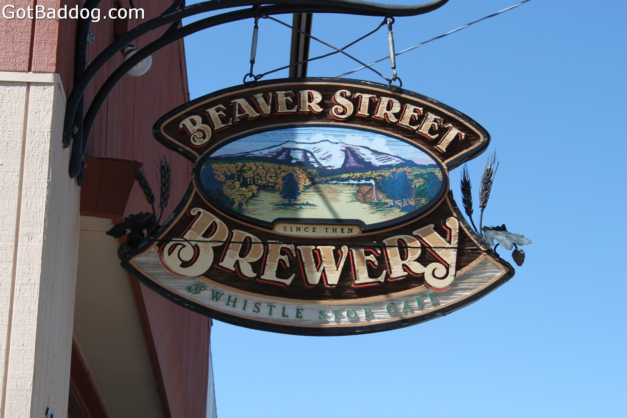 beaverstreet_7794
