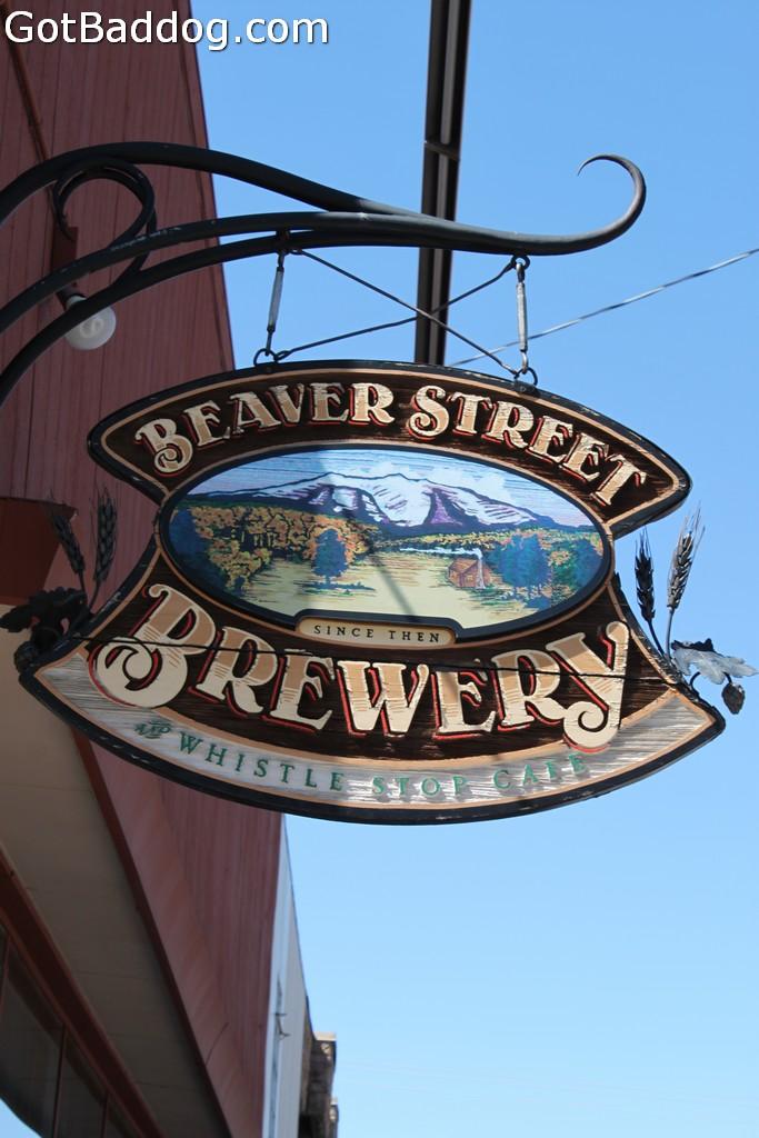 beaverstreet_7795