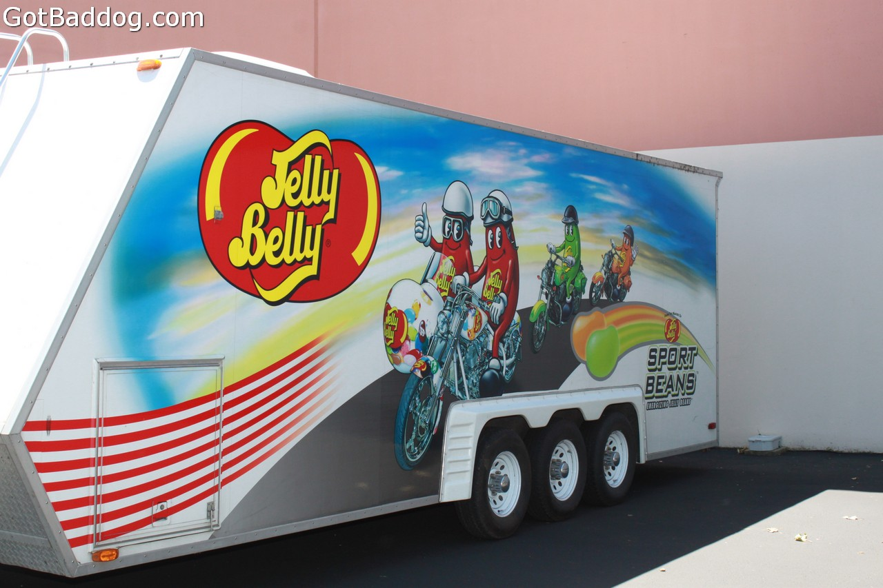 jellybelly_10601