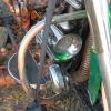 walnutgrove_10585
