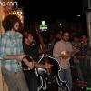 dustbowlrevival_8516