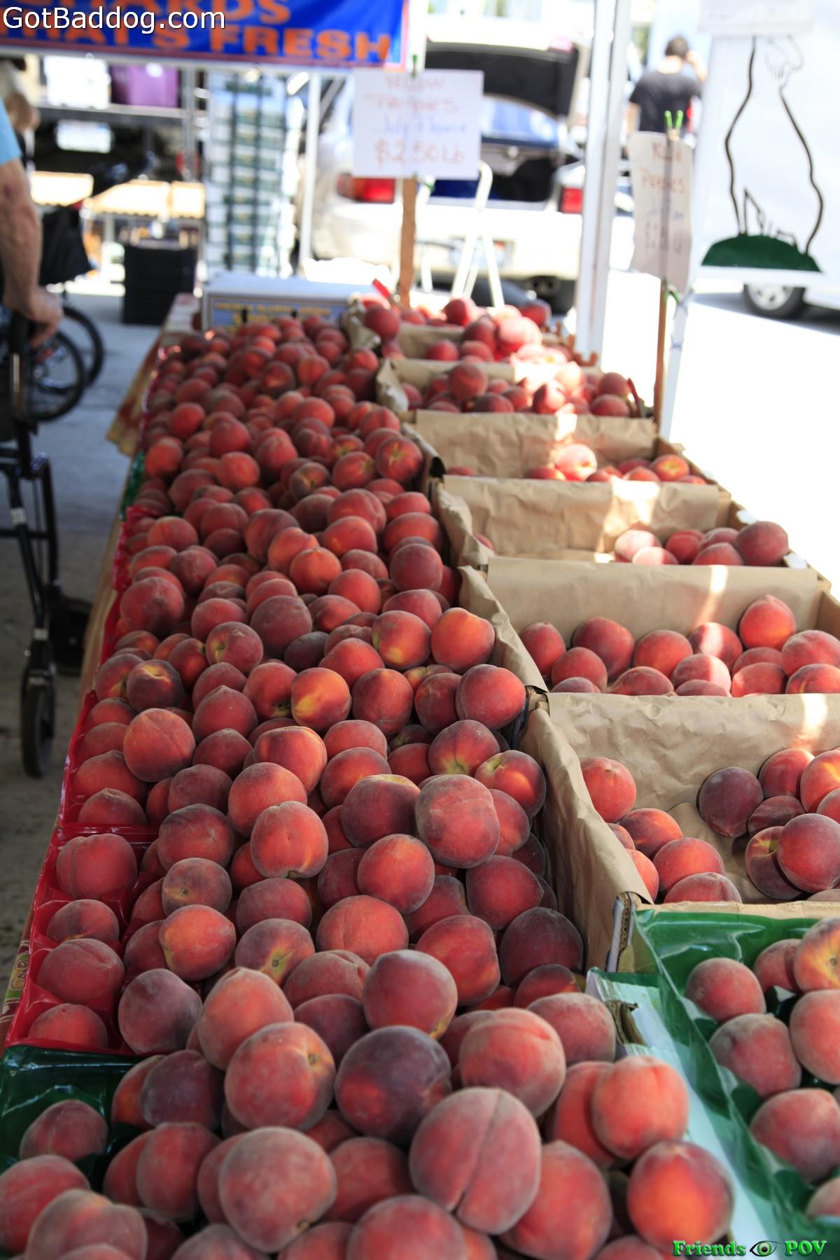 farmersmarket_5773