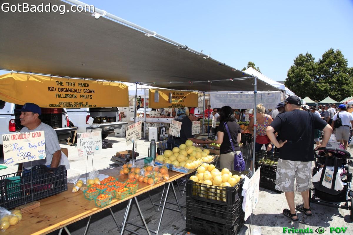 farmersmarket_5779