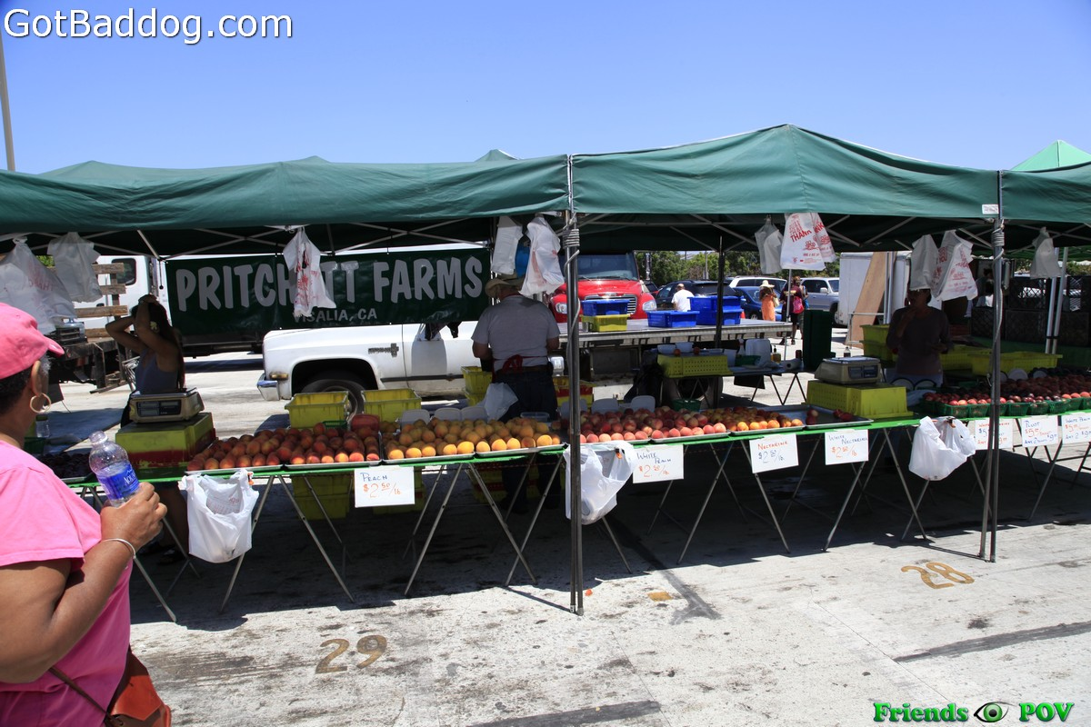 farmersmarket_5791
