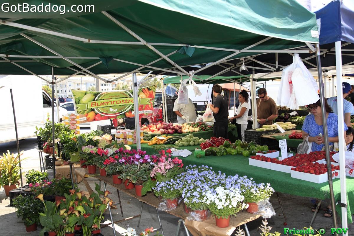 farmersmarket_5804