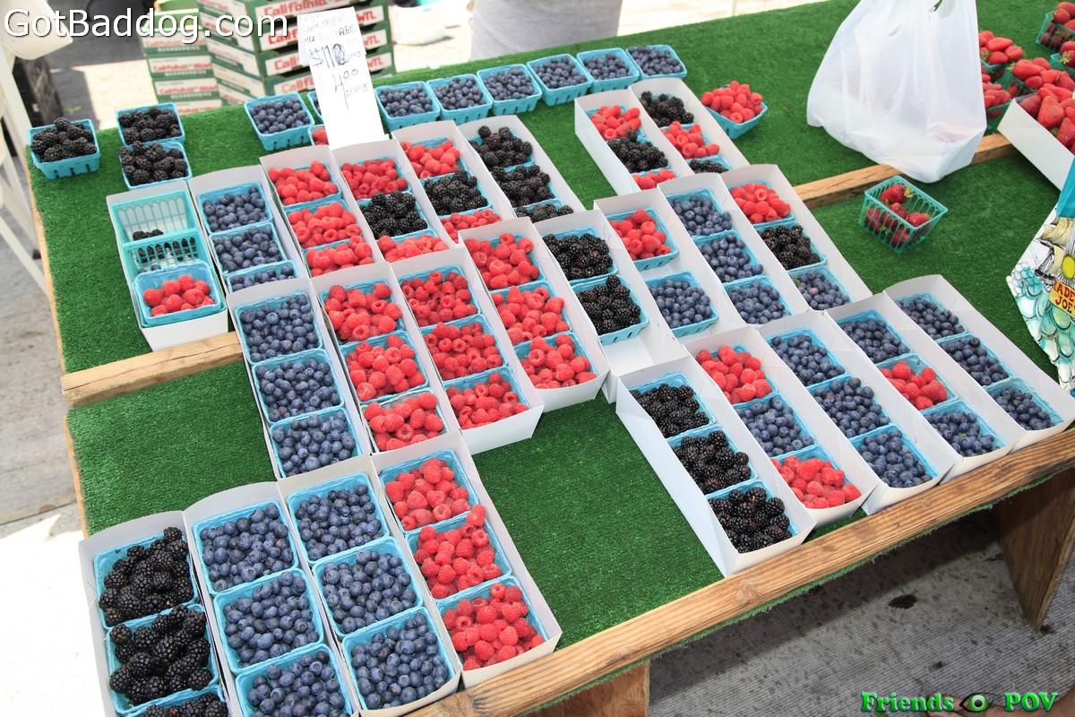 farmersmarket_5806