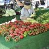 farmersmarket_5790