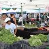 farmersmarket_5808