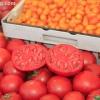 farmersmarket_5816