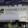 farmersmarket_5817