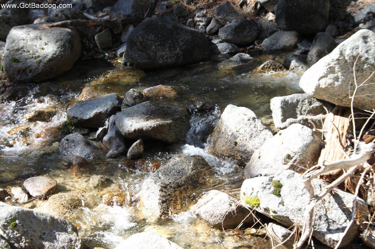 yosemite-feb23_1777