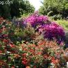 gardensmemorial_0178