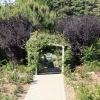 gardensmemorial_0180