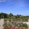 gardensmemorial_0181